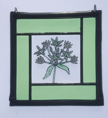 Wild garlic stained glass panel.                               LD