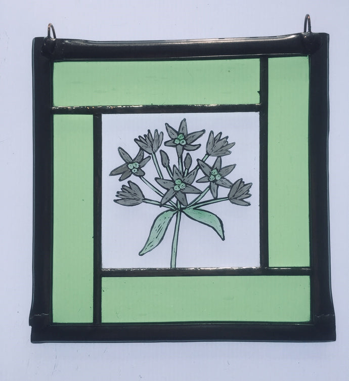Wild garlic stained glass panel - Liz Dart