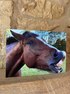 Horse Stonehouse greetings card (Cots cards)