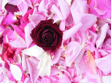 Load image into Gallery viewer, Rose Beauty Mist, Saskia Flower Essences