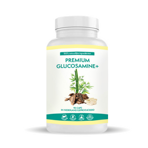 Premium Glucosamine+ supplement
