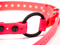 "Quicksnap 3/4"" Mini Bungee for Small Dogs"