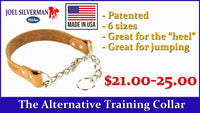 Alternative Training Collar Medium
