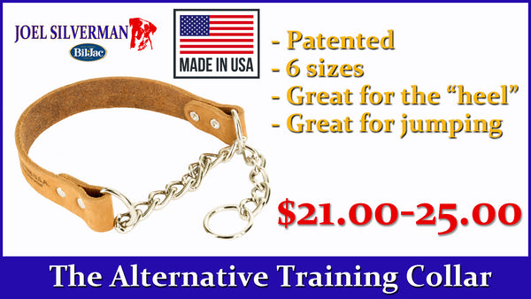 Alternative Training Collar