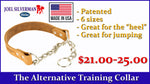 Alternative Training Collar Small