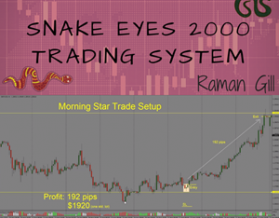 Snake Eyes 2000 Full Time Forex Trading Course by Raman Gill's from Trading Strategy Guides - Forex EA Download
