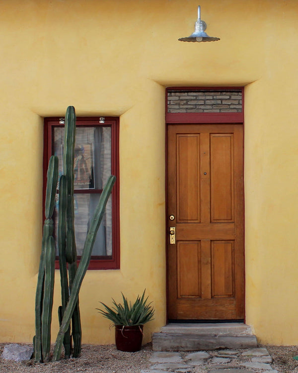Barrio Gold: Doors of Tucson Print