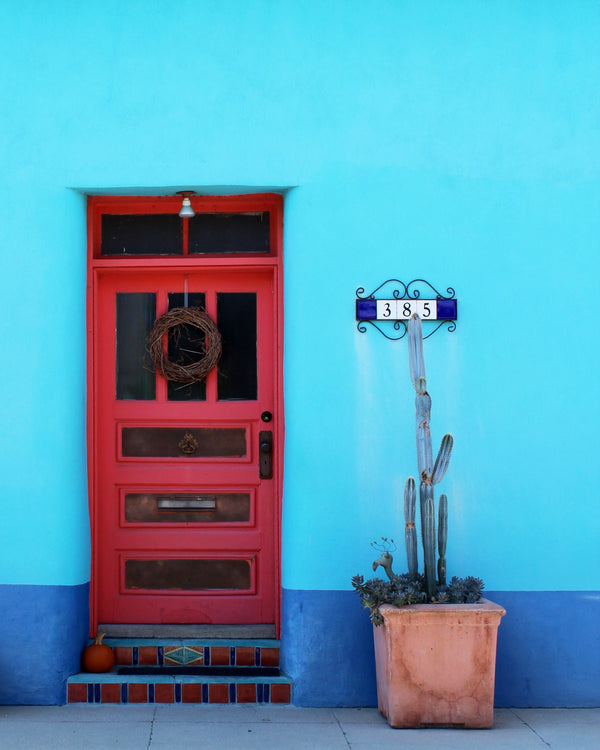 Presidio Blue: Doors of Tucson Print