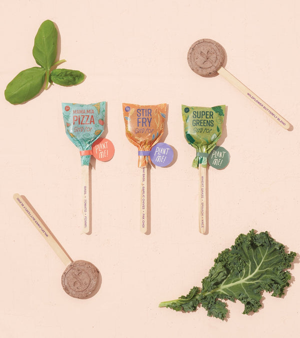 Culinary Seed Lollipop