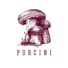Load image into Gallery viewer, Modern Forager Mushroom Notecards