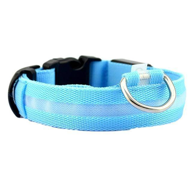 Safety LED Pet Collar