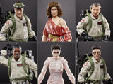 Hasbro Ghostbusters Plasma Series Wave 1 Set of 6 Figures (Terror Dog BAF)