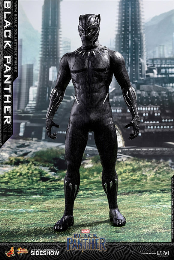 Hot Toys Marvel Black Panther Black Panther 1/6 Scale 12