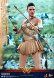 Hot Toys DC Comics Wonder Woman  (Training Armor Version) 1/6 Scale Figure