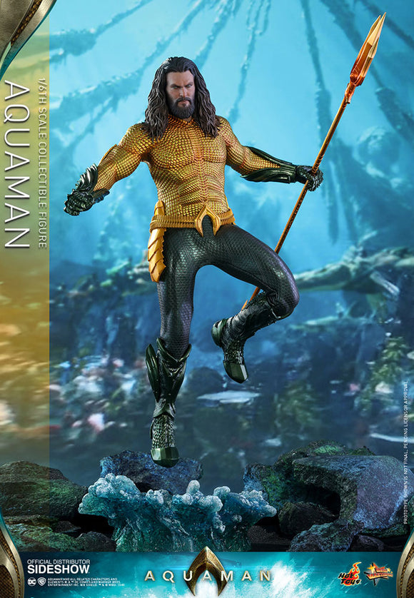 Hot Toys DC Comics Aquaman 1/6 Scale 12