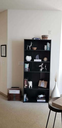 Picture of a beautifully organized bookcase