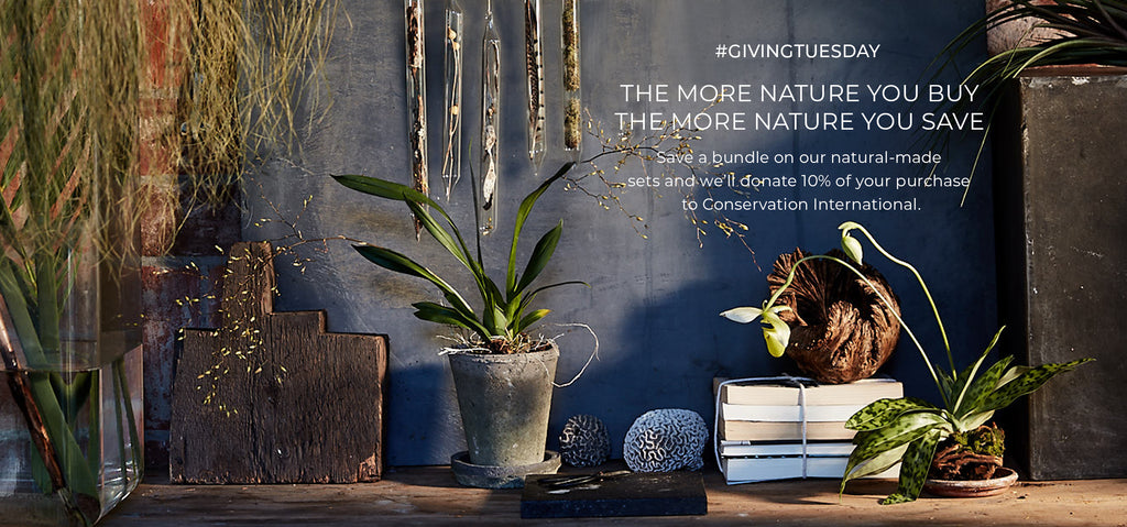 For #GivingTuesday The More Nature You Buy, The More Nature You Save