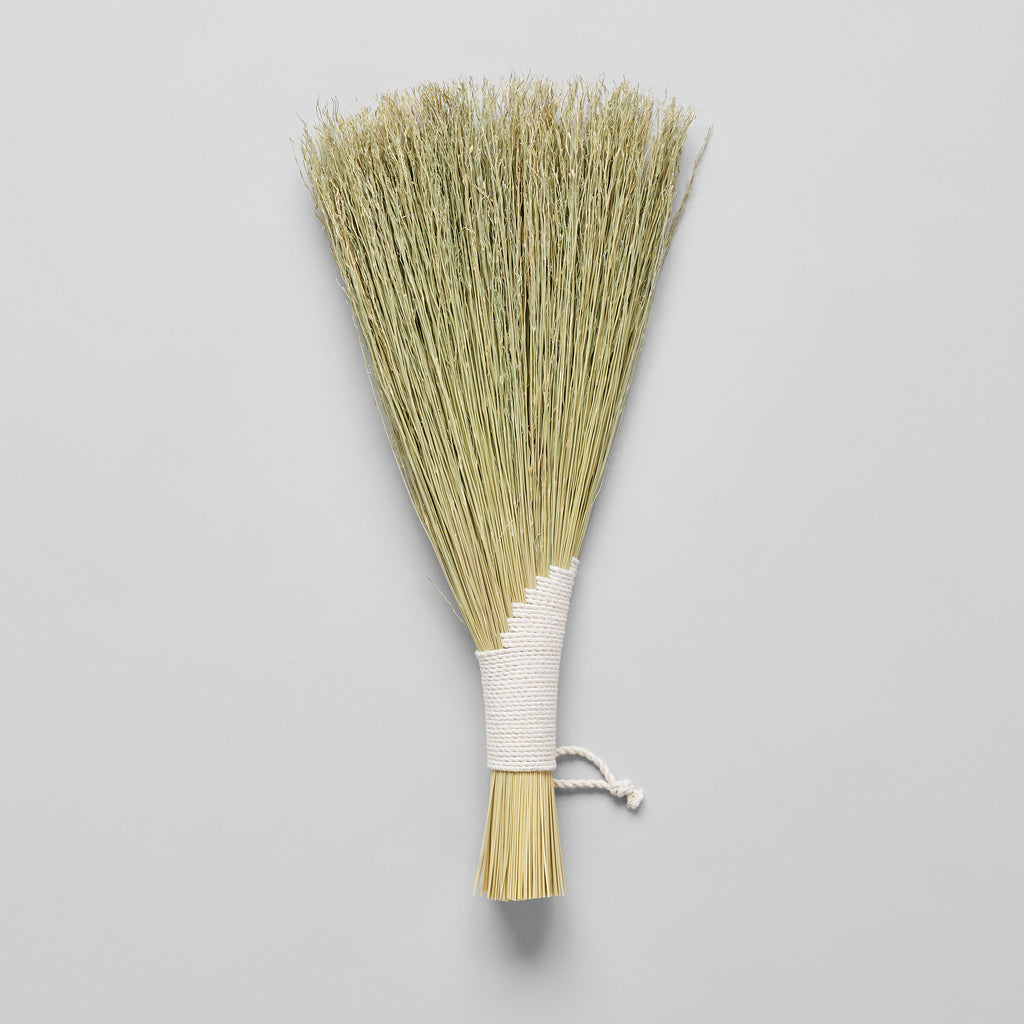 Wing Hand Broom, Natural - Bloomist