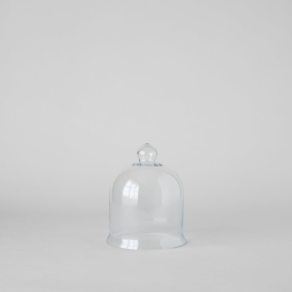 Handblown Glass Cloche - Bloomist