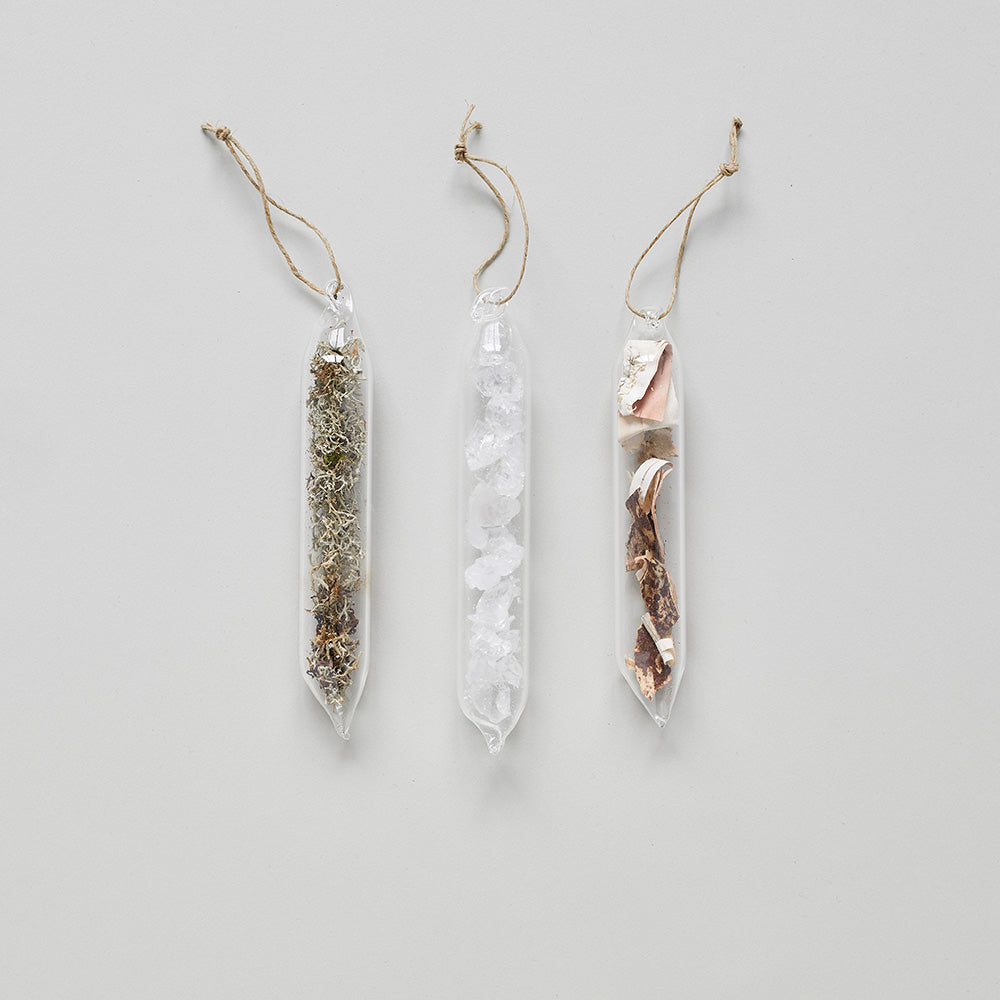Encapsulated Nature Ornaments - Bloomist