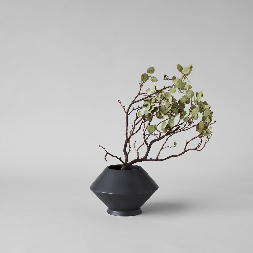Dried Manzanita Branch with Leaves Intact Inside Geometric Vase - Bloomist