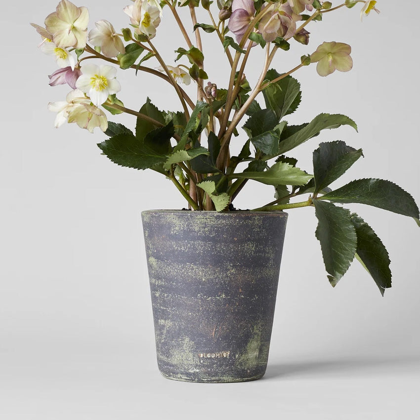 Basic Planter, Gray Patina - Bloomist