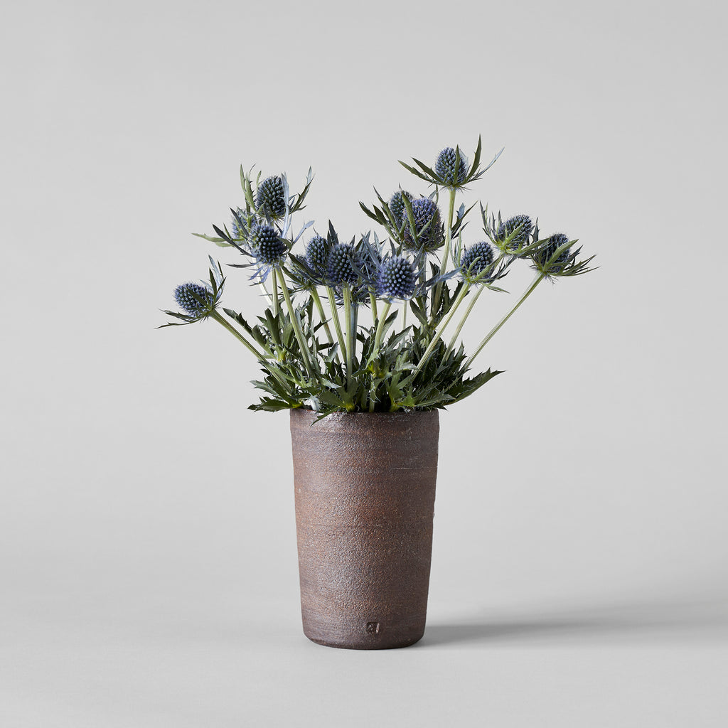 Rustic brown vase - Bloomist