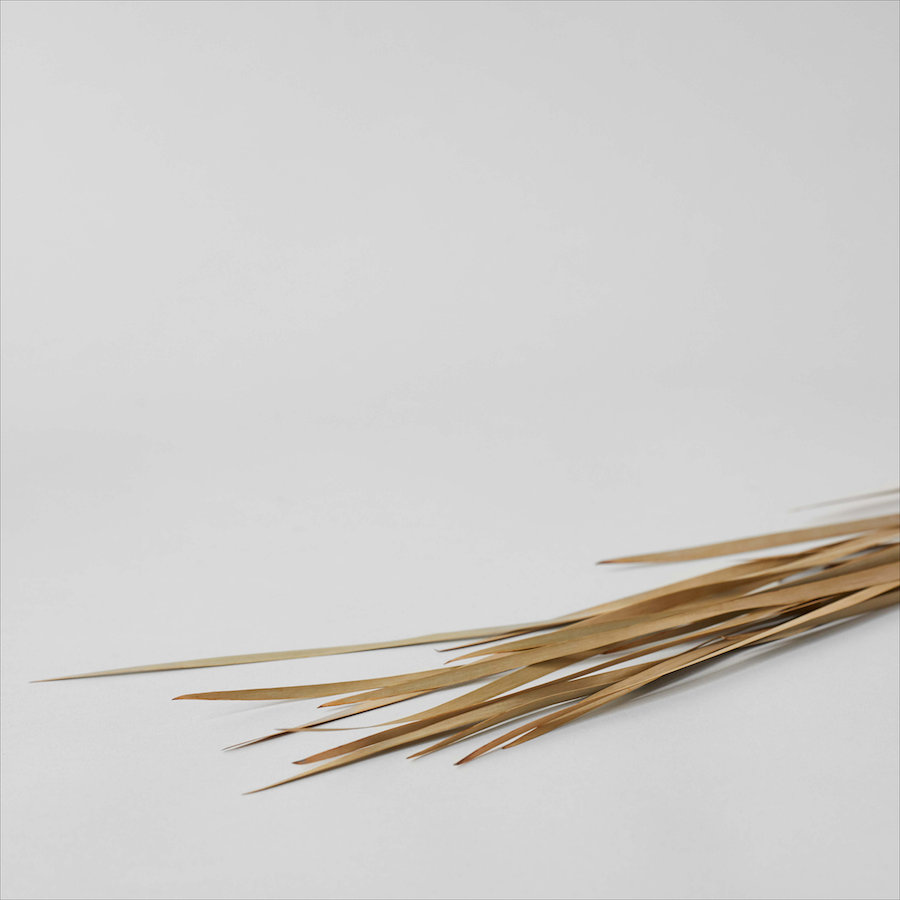 Dried Wild Grass - Bloomist