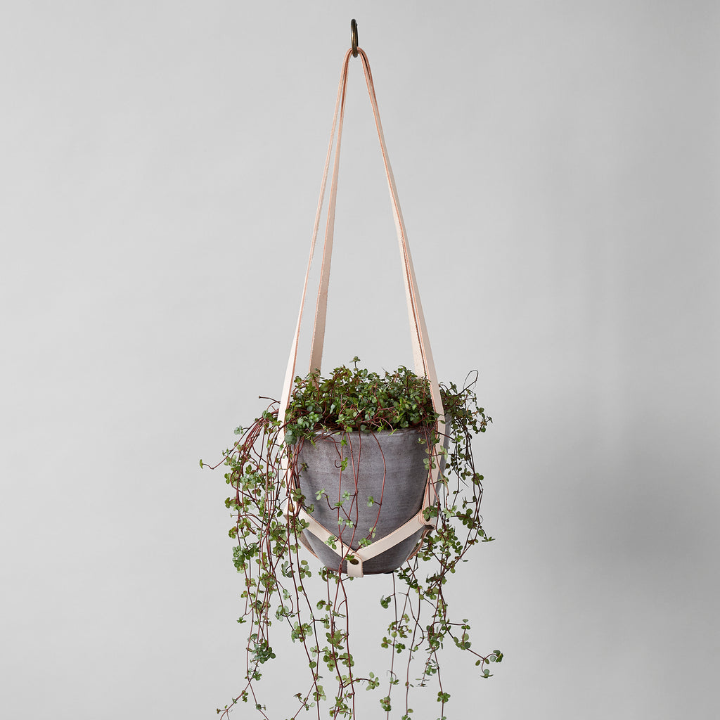 Leather Plant Hanger - Bloomist