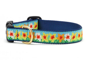 Up Country Daffodil Dog Collar