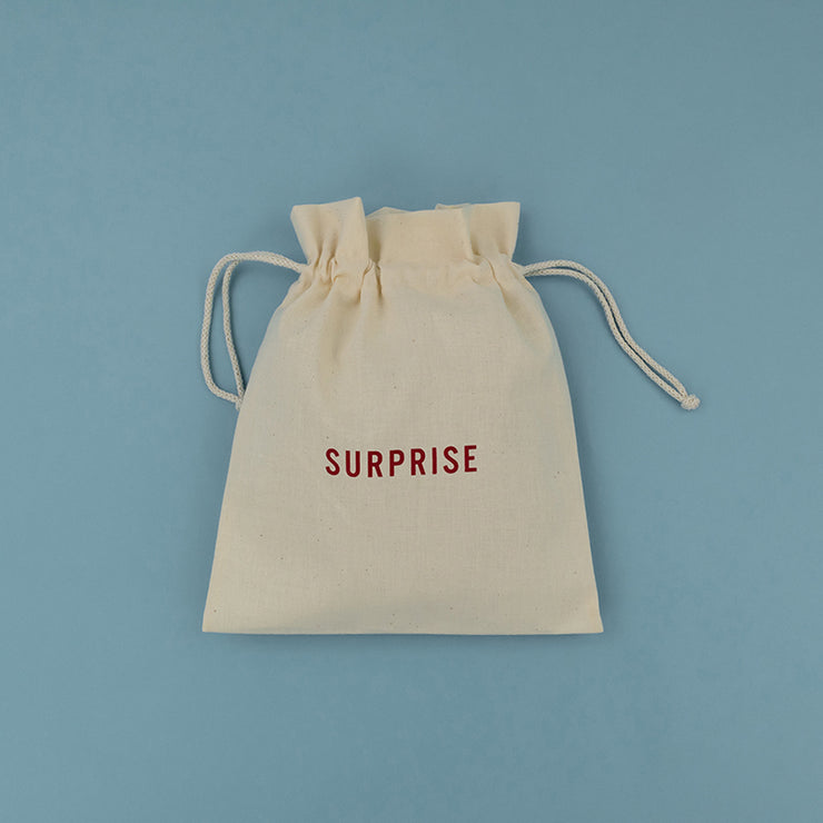 Cotton Gift Bag - Large - Surprise CGB02