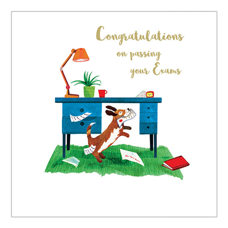 Congratulations on passing your exams - PLUM03