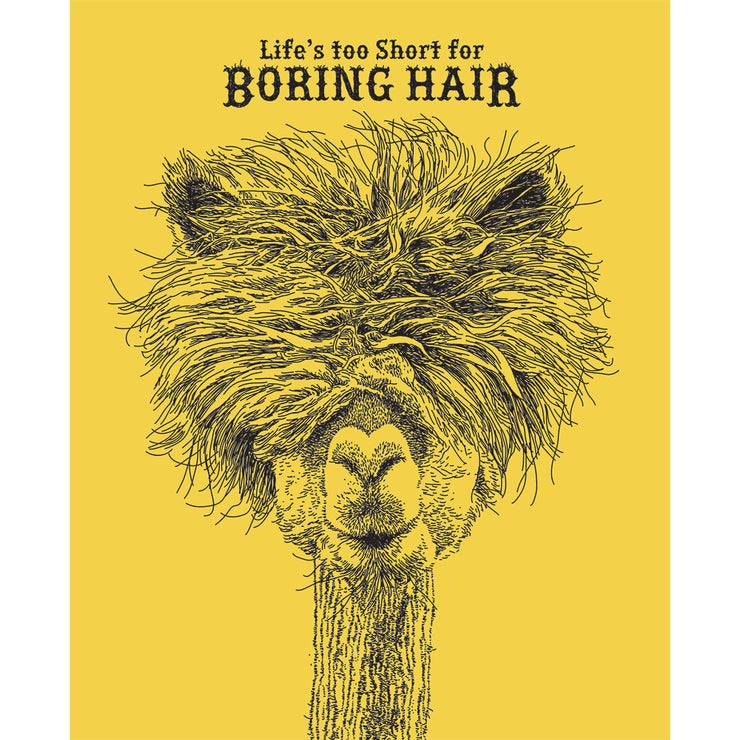 Really Good Life's Too Short For Boring Hair Card