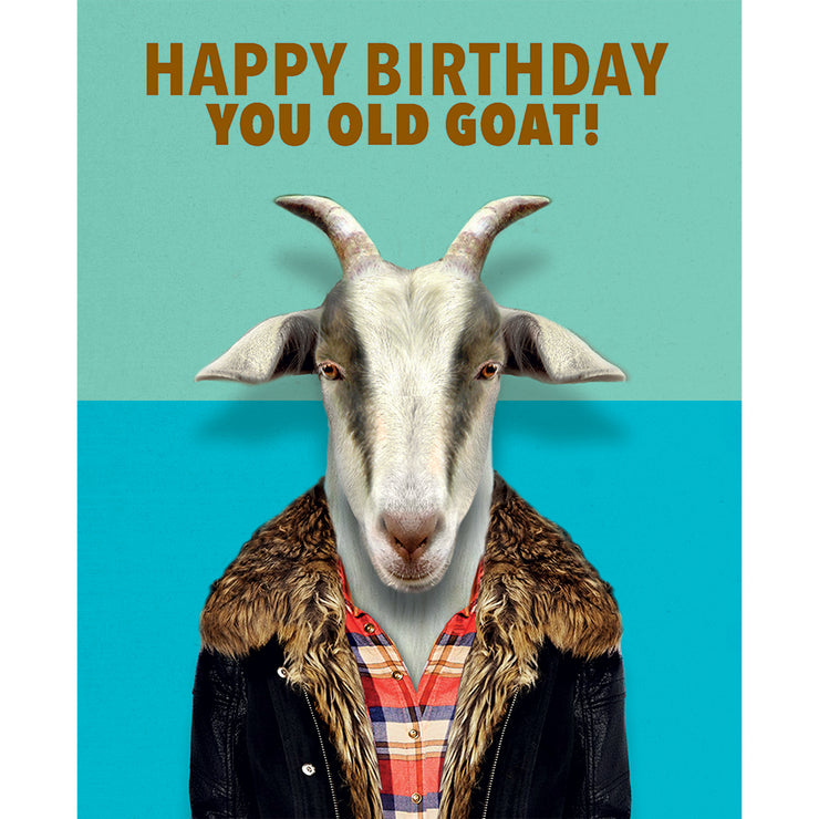 Really Good Happy Birthday You Old Goat Card