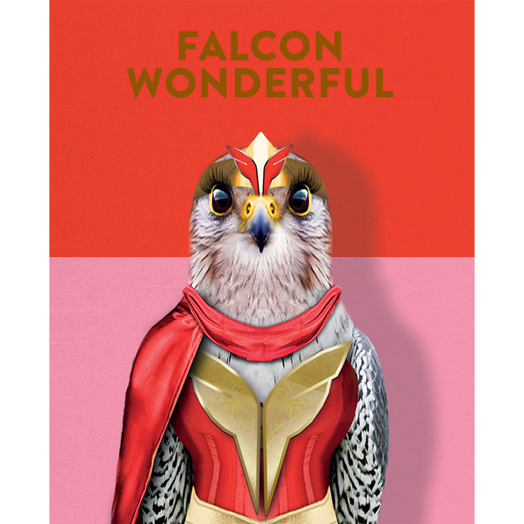 FALCON WONDERFUL