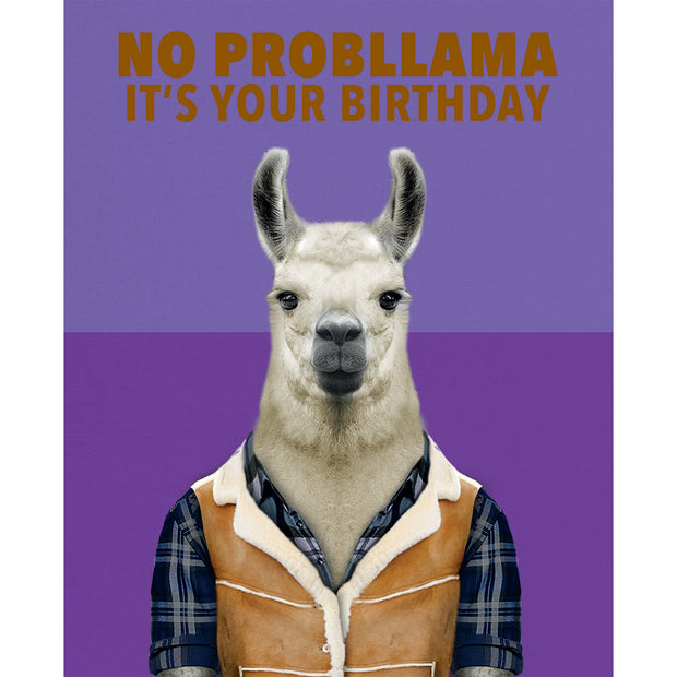 Really Good No Probllama Birthday Card