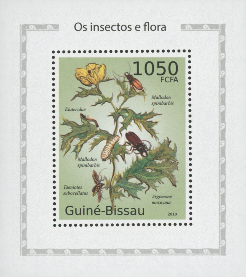 Insects And Flora Click Beetle Mini Sov. Sheet MNH