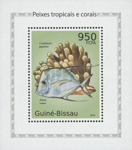 Tropical Fish And Corals Lookdown Mini Sov. Sheet MNH