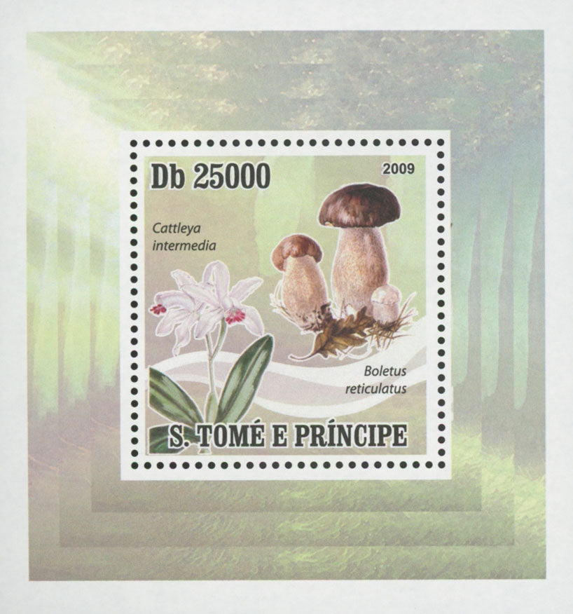 Mushrooms Cattleya Intermedia Mini Sov. Sheet MNH