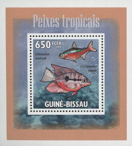 Tropical Fish Cheirodon Mini Sov. Sheet MNH