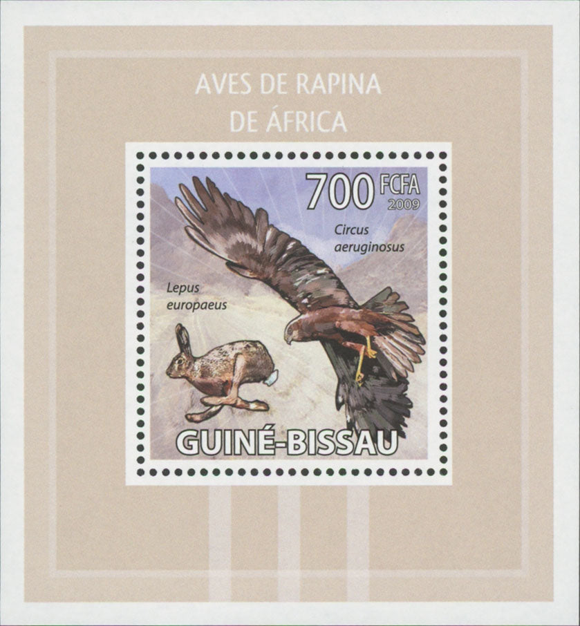 African Birds of Prey Circus Aeruginosus Mini Sov. Sheet MNH Mint