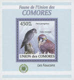 Falcons Stamp Peregrinus Newtoni Birds Mini Sov. Sheet MNH