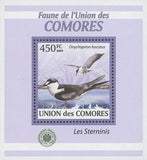 Terns Stamp Onychoprion Fuscatus Birds Mini Sov. Sheet MNH