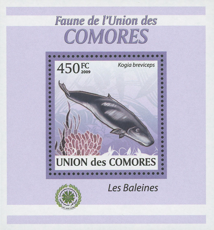Whale Stamp Marine Life Kogia Breviceps Mini Sov. Sheet MNH