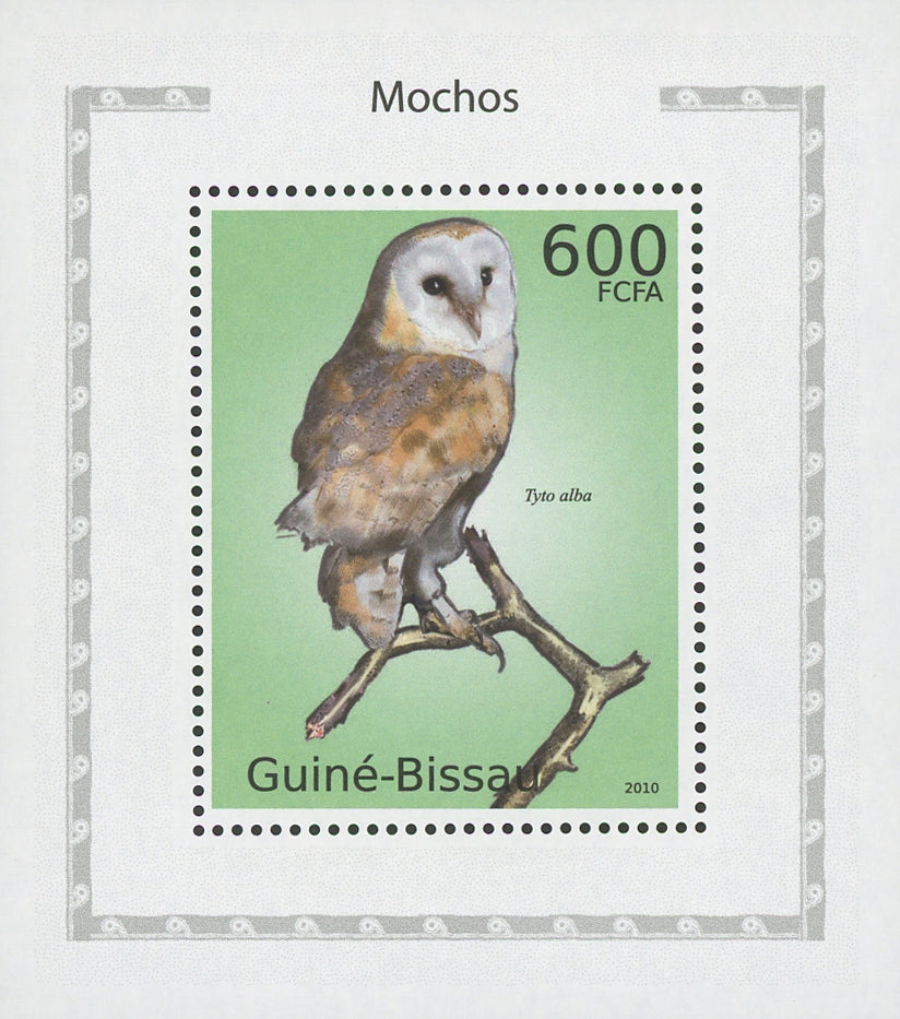Owls Tyto Alba Birds Mini Sov. Sheet MNH
