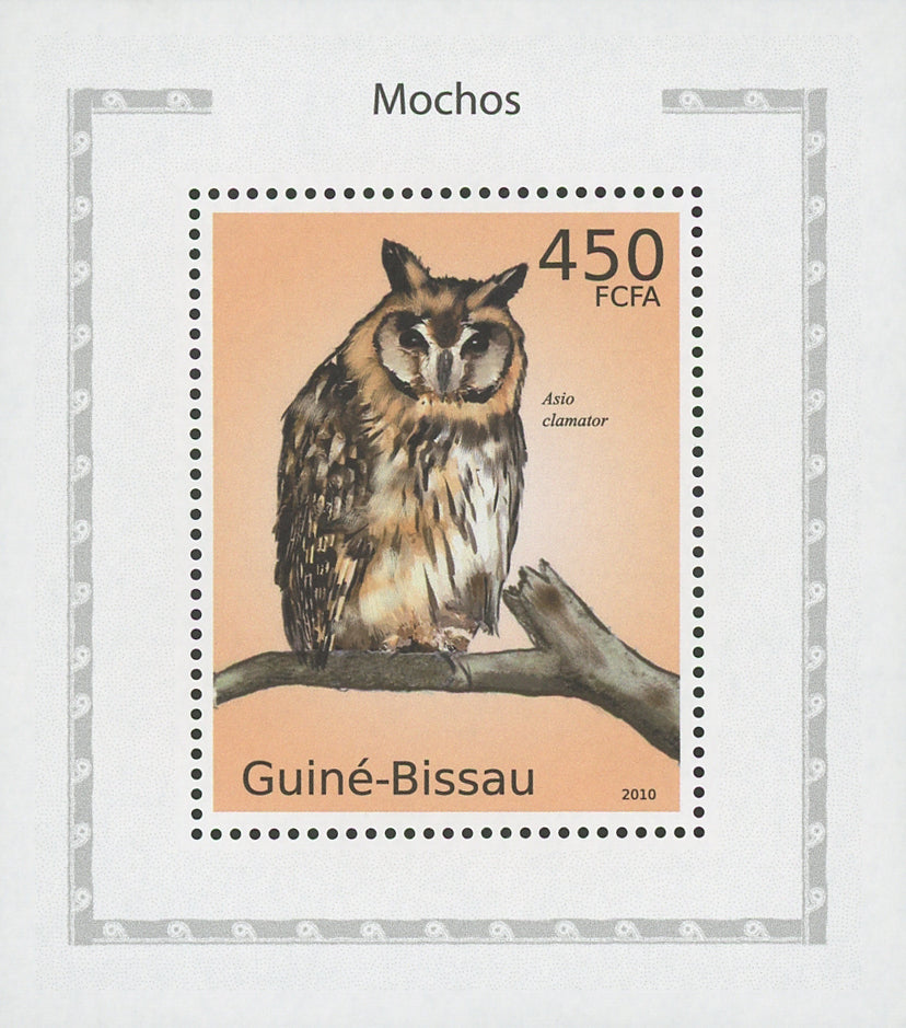 Owls Asio Clamator Birds Mini Sov. Sheet MNH