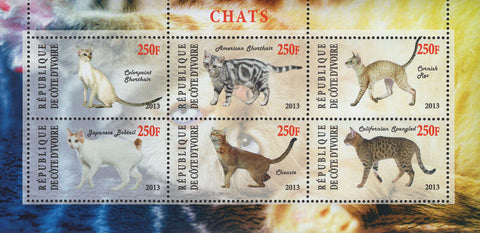 Cote D'Ivoire Cats Domestic Animals Souvenir Sheet of 6 Stamps Mint NH
