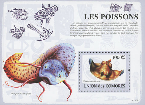 Fish Marine Life Protopterus Aethiopicus Stamp Souvenir Sheet Mint NH MNH