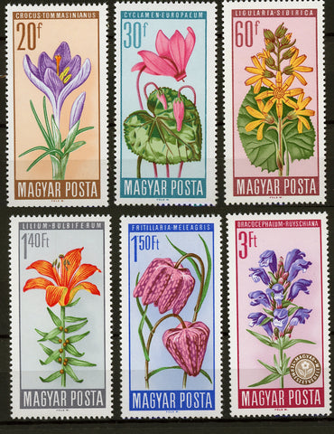 Hungary Flower Plant 1966 Serie Set of 6 Stamps Mint NH