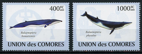 Cetacean Whale Marine Fauna Serie Set of 2 Stamps Mint NH